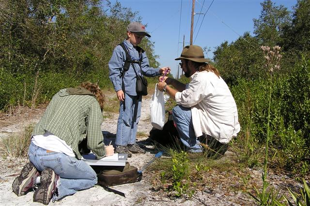 Gopher Tortoise Monitoring
