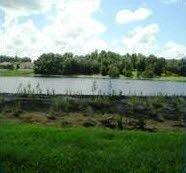 Lake Restoration/Aquatic Weed Control MSBUs