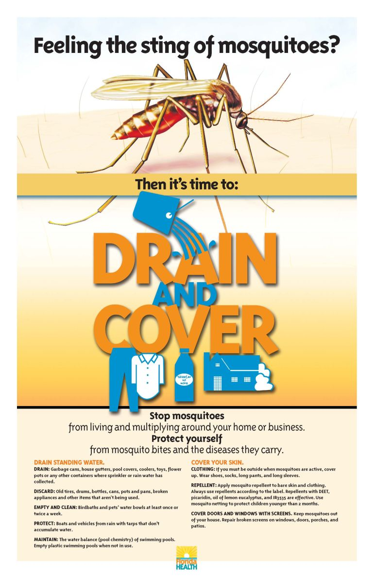 Drain and Cover Mosquito Poster