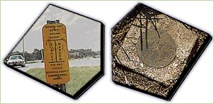 Picture of Survey markers